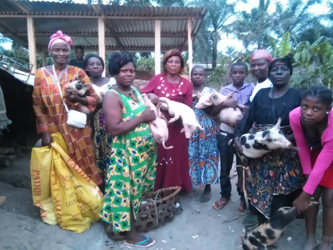 NKONG Widows Piggery Projects Integrates Poultry